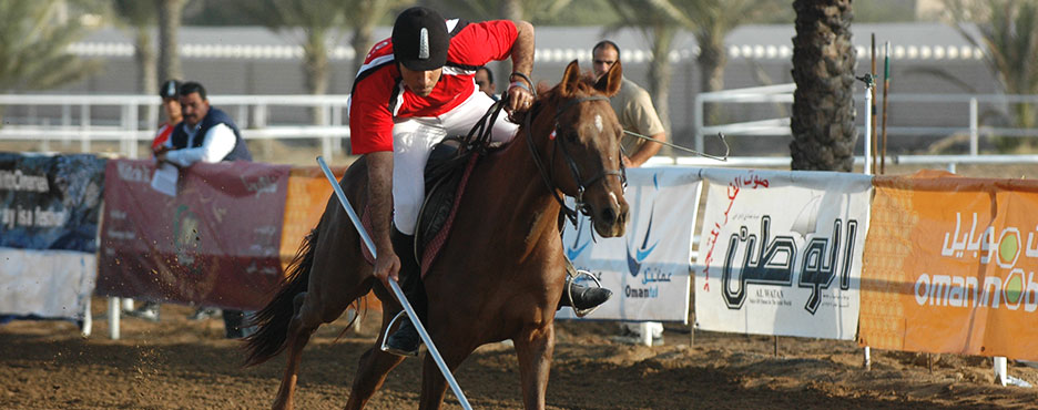 & Egyptian Equestrian Federation | Horses and Riders in Egypt | FEI